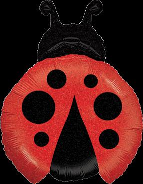 Kleiner Marienkäfer Holographische Folienballon