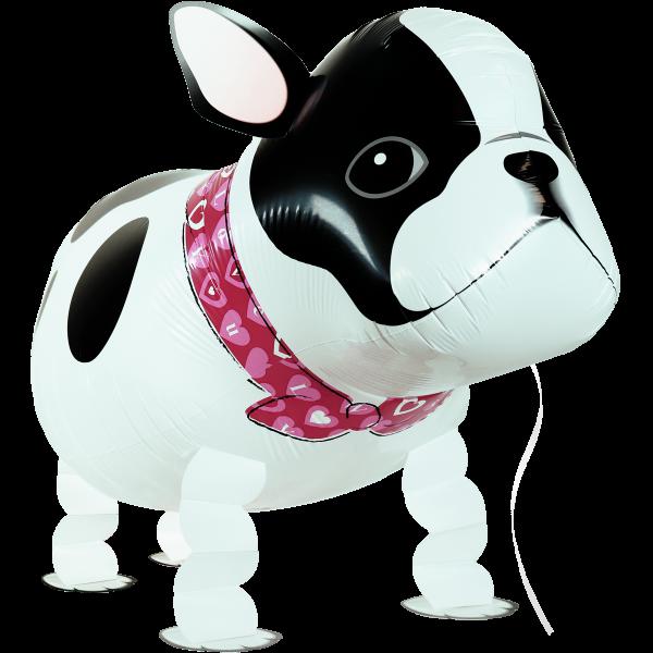 Ballon - Airwalker-Ballon - Bulldoggen-Hund