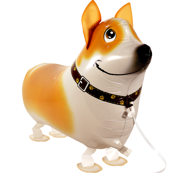 Walking Ballon - Airwalker Ballon -Corgi Hund